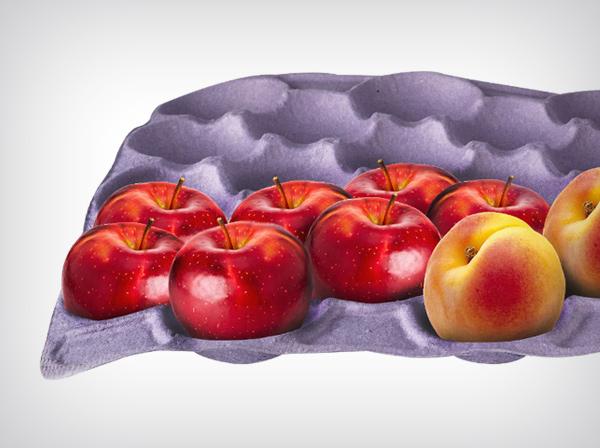 Obst-und-Gemüsehalter
